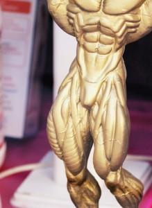 weight training legs