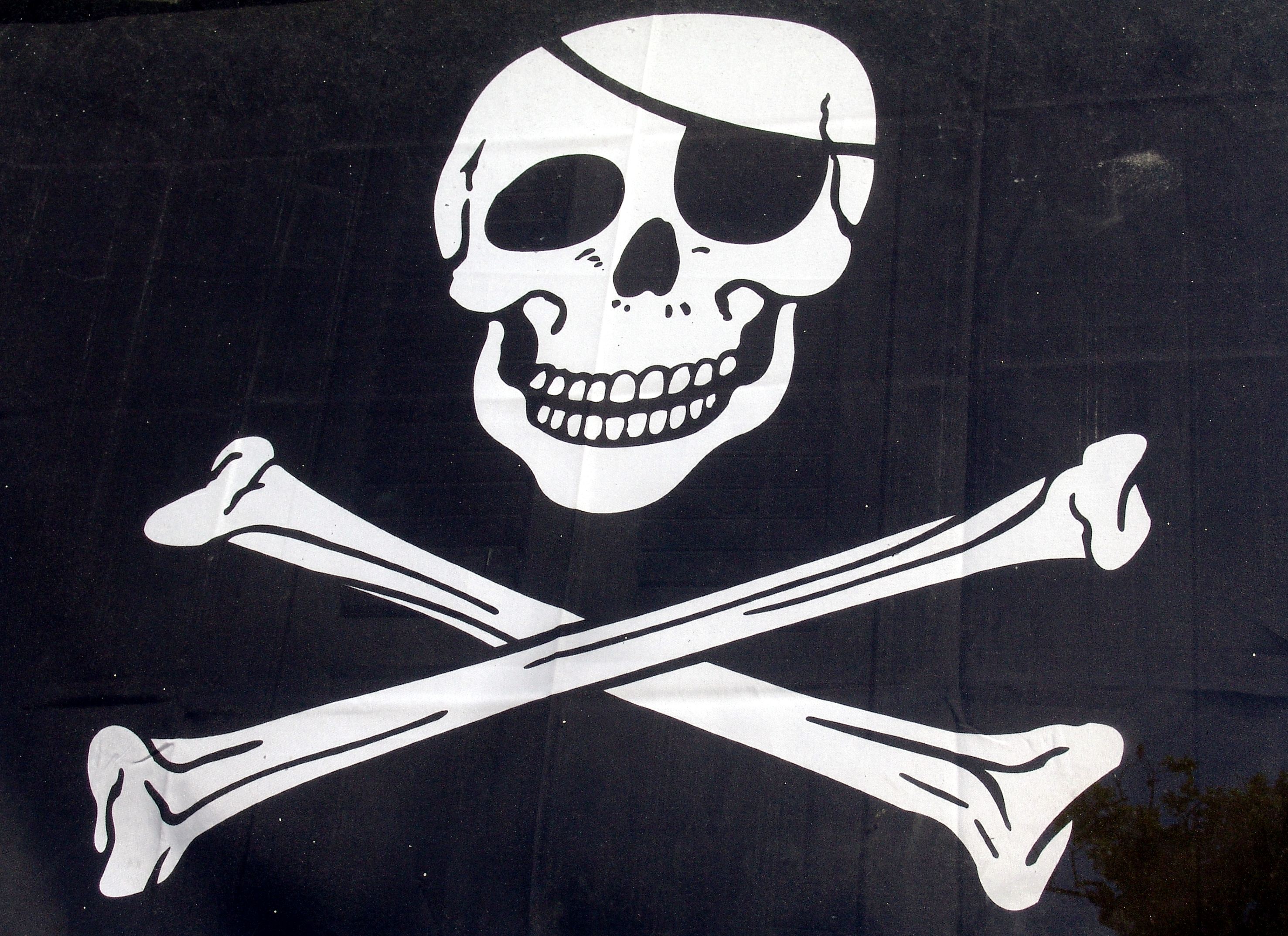 piracy-header
