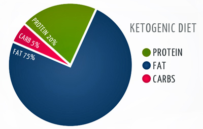 ketogenic diet how to start low carb diet gluten free ketosis ketones